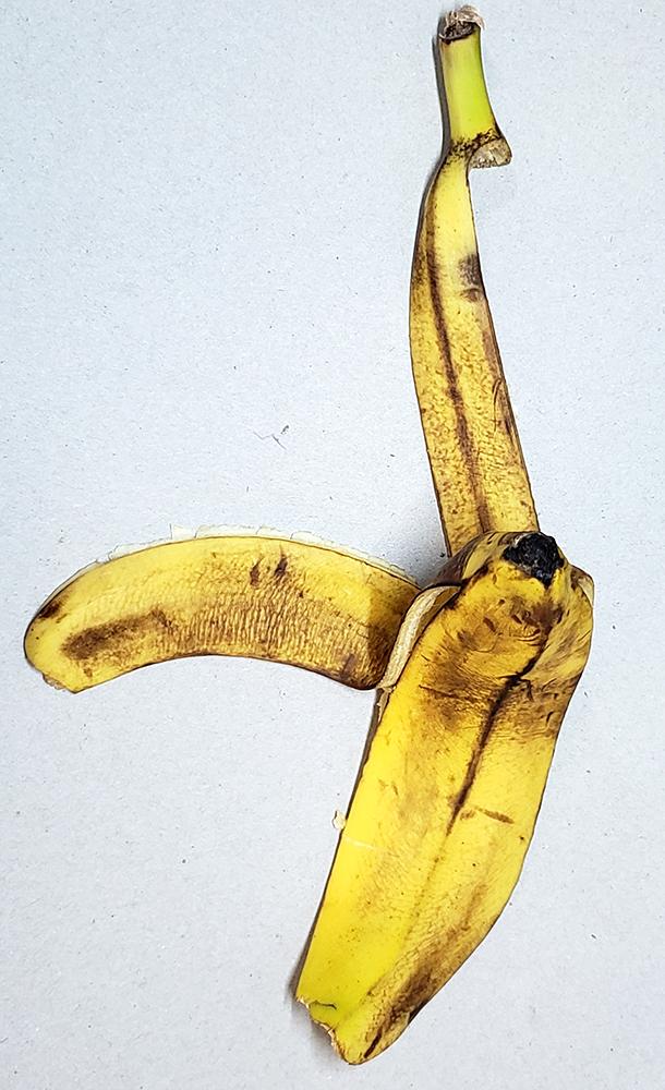 How to draw a banana_banana peel reference 02