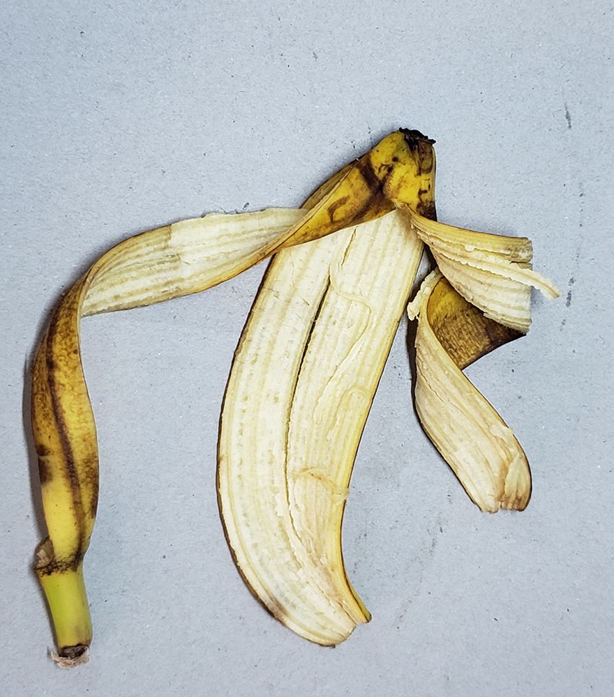 How to draw a banana_banana peel reference 04