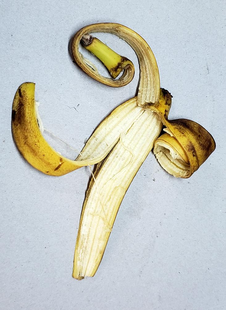 How to draw a banana_banana peel reference 05