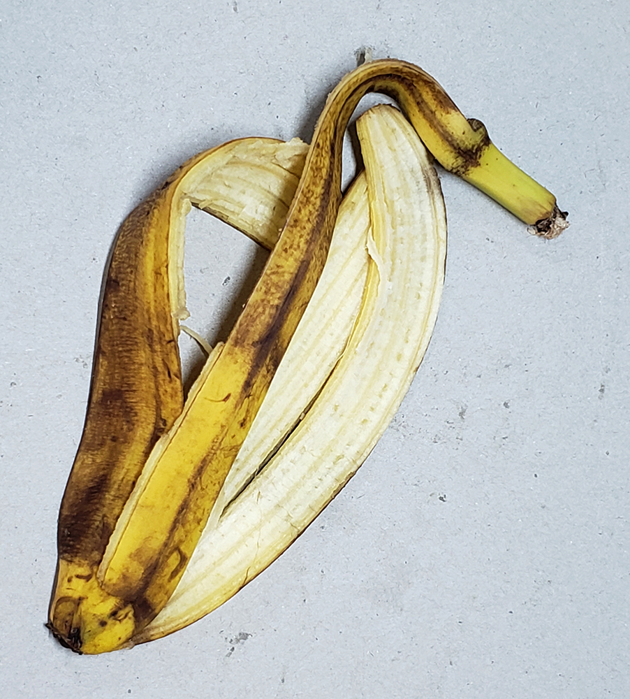 How to draw a banana_banana peel reference 07