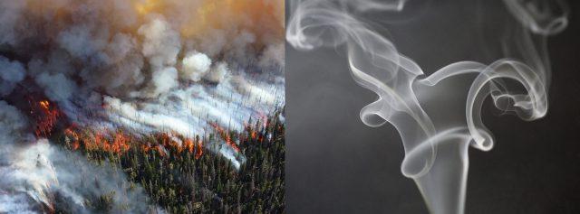 Without Set Form-Smoke