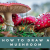 How to Draw a Mushroom_Featured Image_June 2021