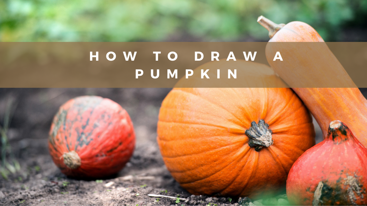 How to draw a pumpkin featured image