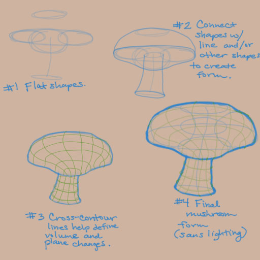 How to draw a mushroom_Construction - Shapes to forms 04