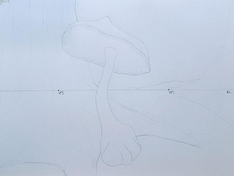 How to draw a mushroom_Light & shadow 01