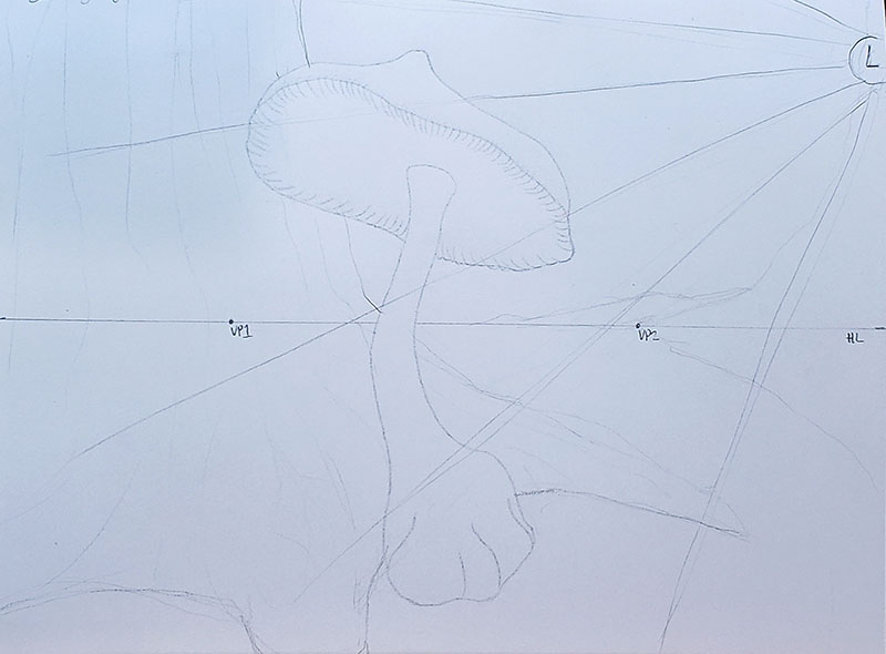 How to draw a mushroom_Light & shadow 02