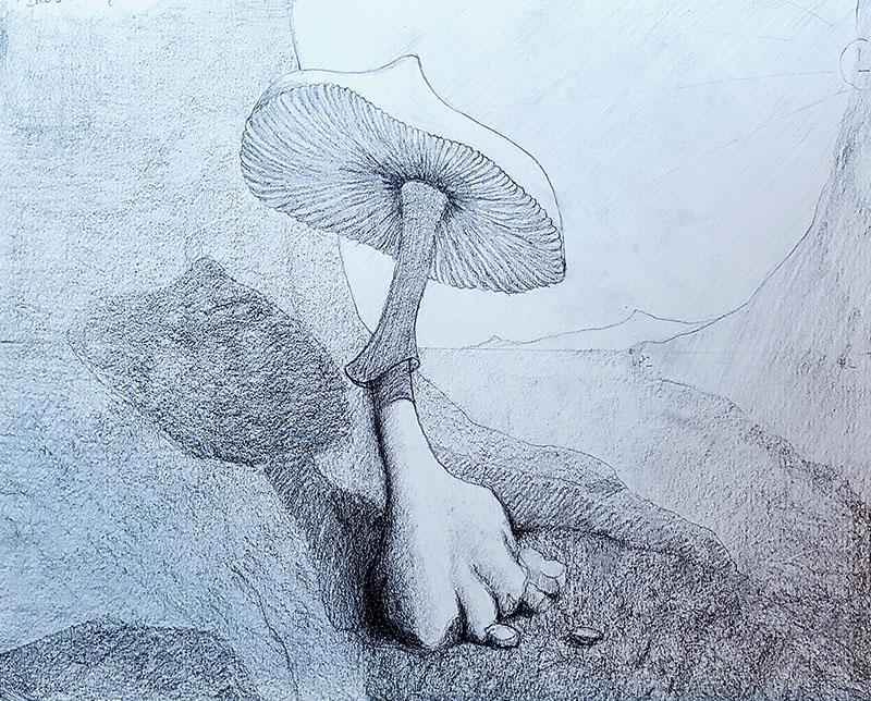 How to draw a mushroom_Light & shadow 07