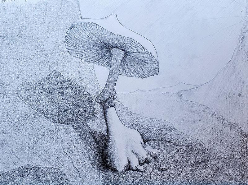 How to draw a mushroom_Light & shadow 08
