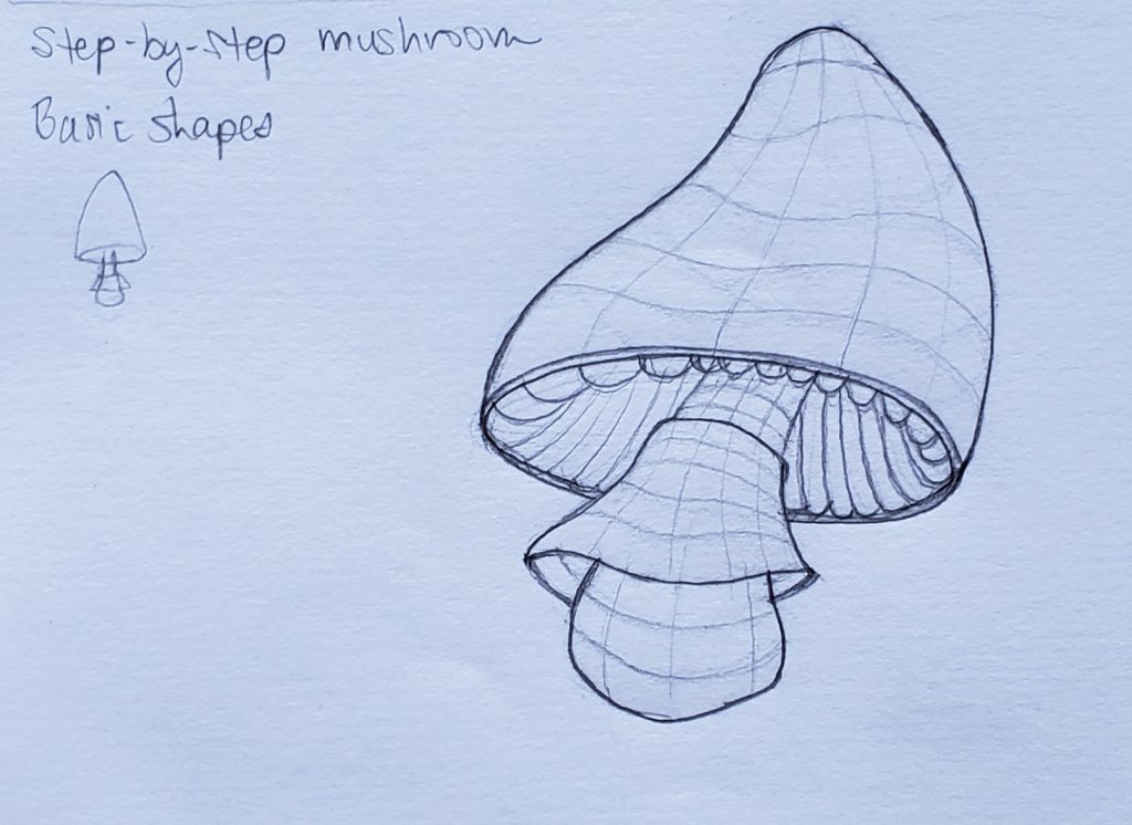 How to draw a mushroom_Step-by-step 09