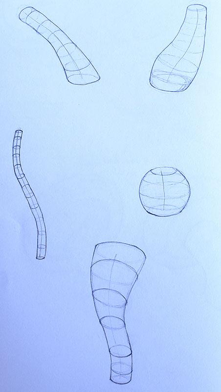 How to draw a mushroom_form construction 06