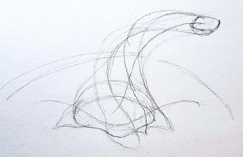 How to draw a pumpkin_Step by step 04f pumpkin stem