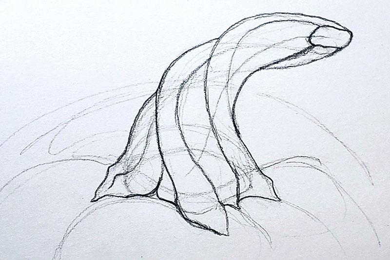 How to draw a pumpkin_Step by step 04h pumpkin stem