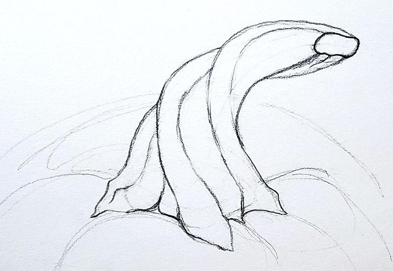 How to draw a pumpkin_Step by step 04i pumpkin stem