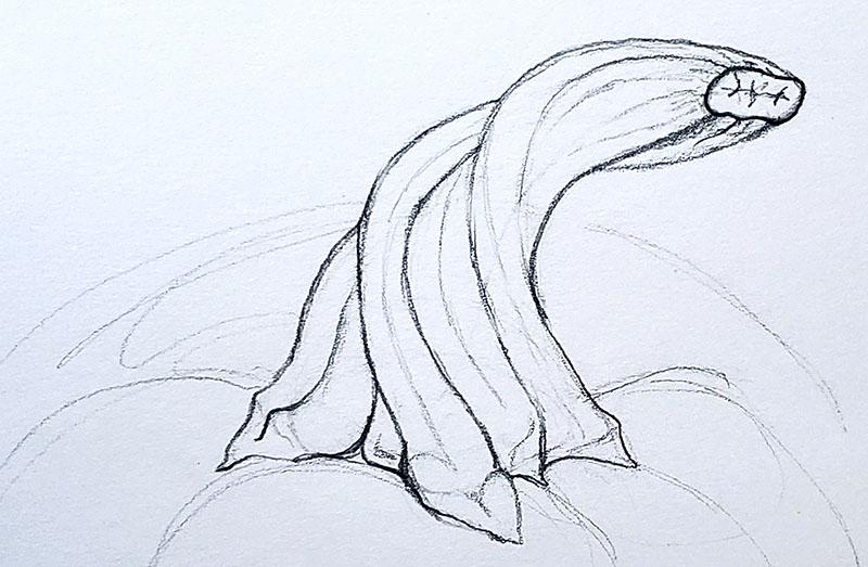 How to draw a pumpkin_Step by step 04j pumpkin stem