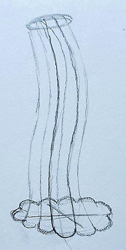 How to draw a pumpkin_Step by step 05c pumpkin stem