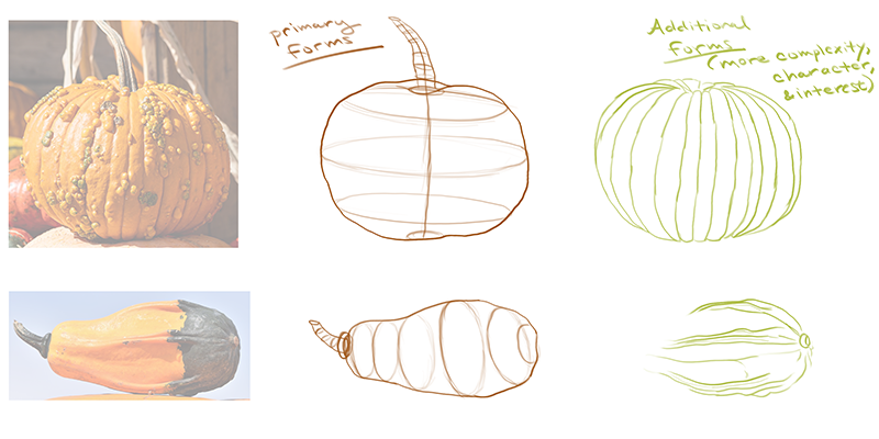 How to draw a pumpkin_about details_02 primary forms and additional forms