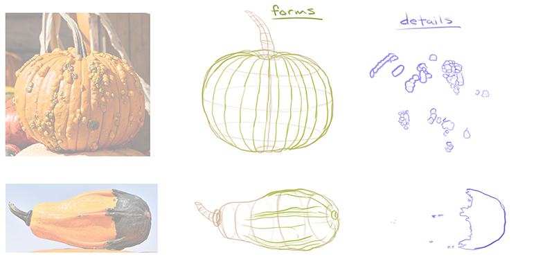 How to draw a pumpkin_about details_03 forms and details