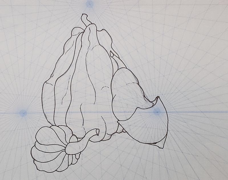 How to draw a pumpkin_lighting demo_001 original sketch