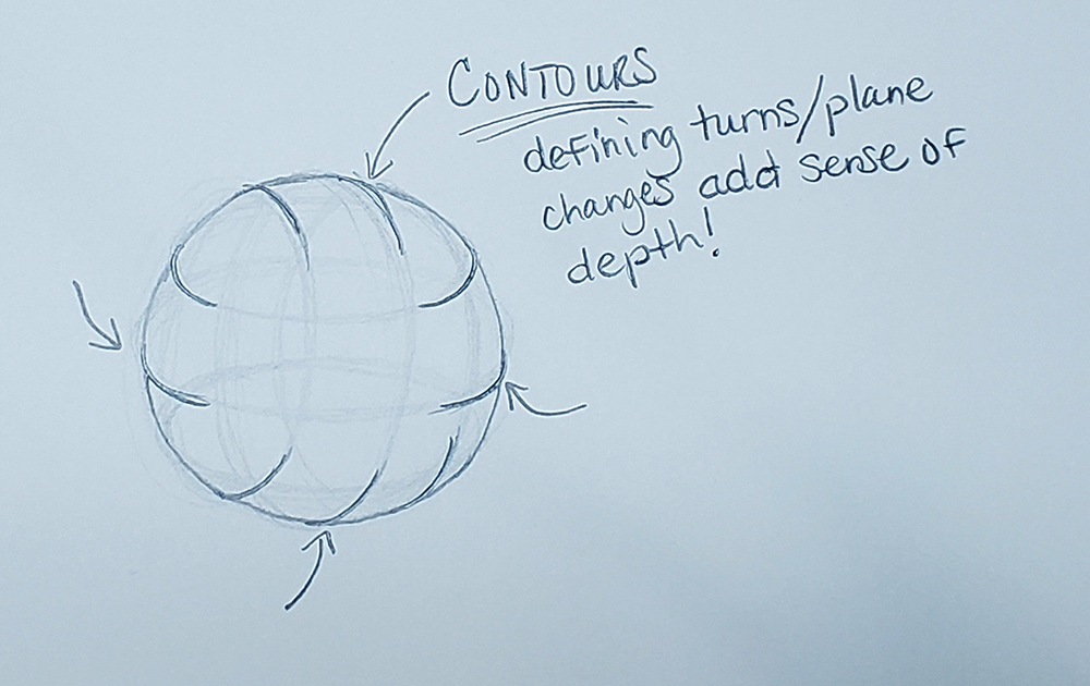 how to draw a sphere_depth with ellipses method 04
