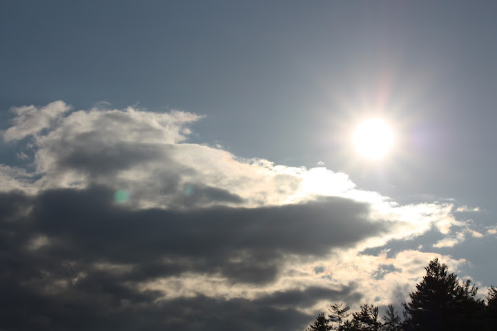 reflected light - natural light sunlight